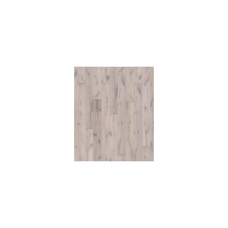 Albus Oak