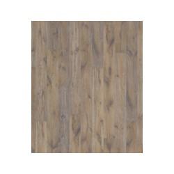 Canus Oak