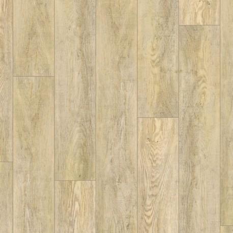 LVT Plankit Arryn
