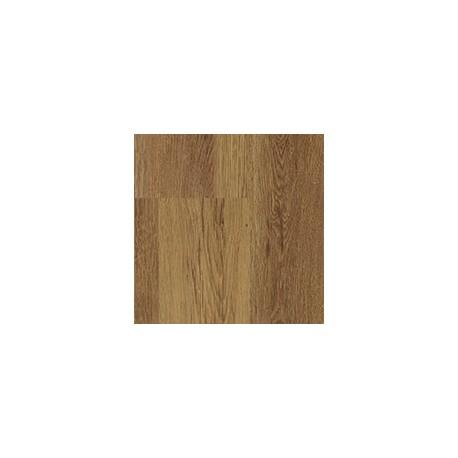 Siena tölgy - 3709