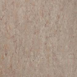 VENETO xf²™ (2,0 mm) - Veneto FOSSIL 502