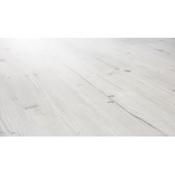 4941 -Biscaya Pine