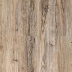 Bronn SPC plank it