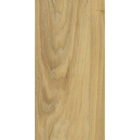 Golden Canadian Oak  - DEI 54612 AMW
