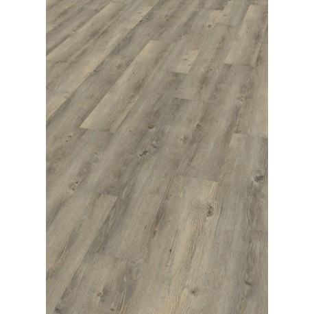 Toscany Pine Grey  - DB 00008